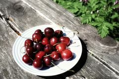 Day no people outdoors in the garden nature close-up green color cherries plate Royalty Free Stock Photo