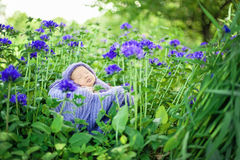 17 day old Smiling newborn baby is sleeping on his stomach in the basket on nature in the garden outdoor. stock image