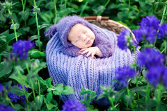 17 day old Smiling newborn baby is sleeping on his stomach in the basket on nature in the garden outdoor. Stock Images