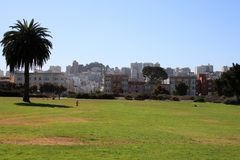 A Day at the Park. In beautiful San Francisco California Royalty Free Stock Images