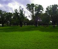 A Day in the park. A bright sunny day at Liberty park in Plantation Florida Stock Photo