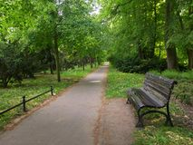 Day in the park. Summer sunny day in the Park Royalty Free Stock Photos