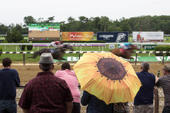 A Day At The Races- Belmont Park New York Stock Photography
