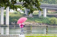 Day of rain Royalty Free Stock Photos