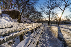 Day after snow in Central Park. Banchs covered by snow Royalty Free Stock Image