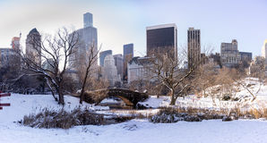 Day after snow in Central Park. Banchs covered by snow Stock Image