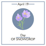 Day of Snowdrop, April 19 Royalty Free Stock Images