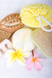 Day Spa Pedicure Items Royalty Free Stock Images