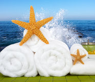 Day Spa Still-life Wtith Sea Salt and Starfish. Day Spa Still-life Wtith Bath Beads, Sea Salt and Starfish On Green Bamboo Mat Royalty Free Stock Images