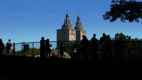 Day Summer Establishing Shot of Silhouetted Tourists in Central Park stock footage