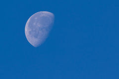 Day time view of Moon Stock Images