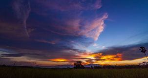 Day to Night With Colorful Sky Over Rice Field. Timelapse day to night with colorful sky over rice field at Songkhla,Thailand stock video