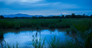 Day To Night At Rice Field stock footage