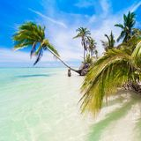 Day tropical sea Royalty Free Stock Images