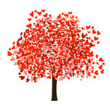 Day valentine tree Stock Photography