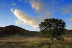 Day view of Autumn scene at Inner Mongolia. China stock image