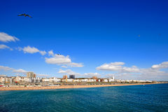 Day view of Brighton in East Sussex UK. Brighton is a town in the city of Brighton and Hove (formed from the towns of Brighton, Hove, Portslade and several other royalty free stock image