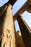 Huge columns as lotus flower Luxor temple. Day view of Luxor Temple Luxor, Egypt stock image