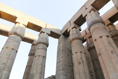 Pillars at Luxor Temple - Egypt. Day view of Luxor Temple Luxor, Egypt royalty free stock images