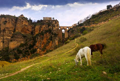 Day view of Ronda with Puente Nuevo bridge Stock Images