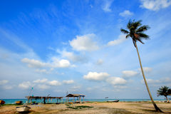 Day view of sand beach with coconut tree. Malaysia royalty free stock photos