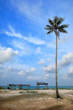 Day view of sand beach with coconut tree. Malaysia royalty free stock image