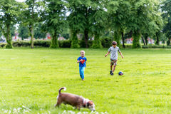 Day view two boys and dog playing football summer park Royalty Free Stock Images