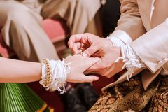 On the day of the wedding the bride and groom must be pushed together by Don sweet exchange rings together. Royalty Free Stock Images