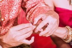 On the day of the wedding, the newlyweds have to be pushed aside by exchanging sweet ring to it. Stock Images