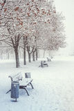 Day winter landscape with benches in the alley of city park Royalty Free Stock Photography