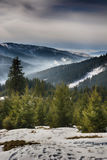 Day of a winter, on wild Transylvania hills. Romania. Low key, dark background, spot lighting, and rich Old Masters Stock Photos