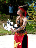 Dayak dance Royalty Free Stock Images