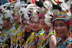 Dayak Girl Stock Photos