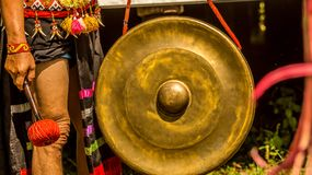 Dayak male ready to hit the gong. At traditional ceremony Royalty Free Stock Photos