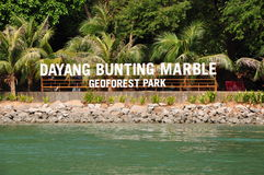 Dayang Bunting Marble Geoforest Park Stock Photography