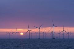 Daybrake en mer de Lillgrund de champ d'éoliennes, Suède Images libres de droits