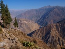 Daybreak. Mountains over the Colca Canyon Stock Photography