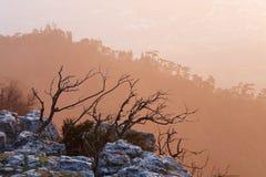 Daybreak landscape Stock Images