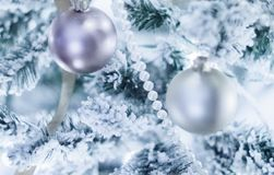 Daydream About Christmas stock photos