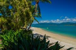 Daydream Island royalty free stock photos