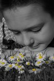 Daydreaming in black and white. Daydreaming child in summer in the field of daisies Stock Image