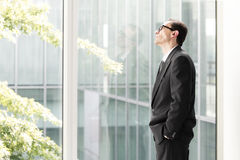 Daydreaming Businessman looking through the window Royalty Free Stock Photography
