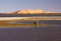 Dayet Srji Salt Lake con las dunas del ergio Chebbi Fotos de archivo libres de regalías