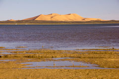 Dayet Srji Salt Lake unter den Dünen des Ergs Chebbi Stockfotos
