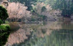 Daylesford de lac Images libres de droits