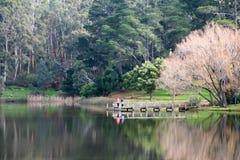 Daylesford de lac Photos stock