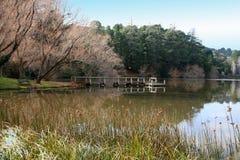 daylesford jezioro zdjęcia royalty free