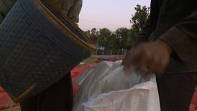 Local farmers pouring rice in sacks using a basket stock video footage