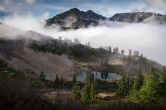 Daylight, Fog, Foggy Royalty Free Stock Images