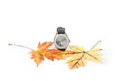 DayLight Savings Fall Back. A front close-up studio shot of a silver wrist clock and fall leaves Royalty Free Stock Images